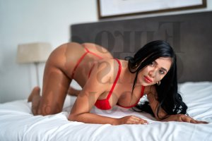Ylanna live escorts in Oak Ridge TN & tantra massage